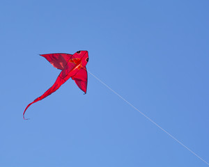 Fish shape kite in the sky
