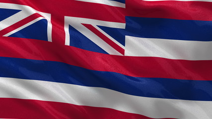 US state flag of Hawaii waving in the wind - loop