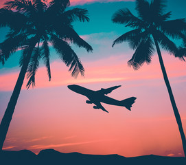 Retro Airliner With Palm Trees