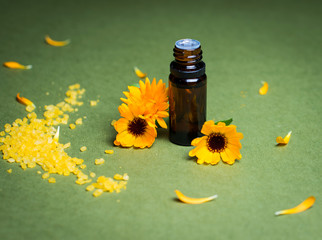 Essential aroma oil with calendula on green background.
