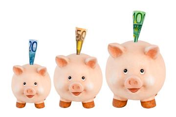 Drei Sparschweine mit Euro-Geldscheinen