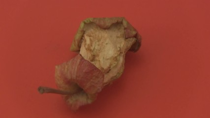 Apple core on a red background.