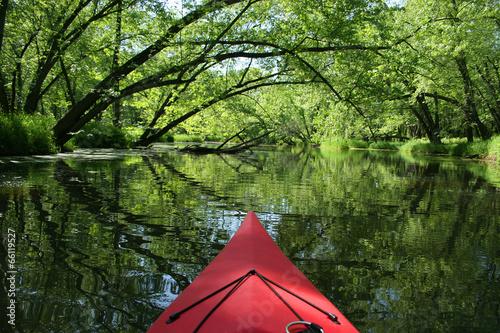 Fotobehang Rivier Scenic Kayaking