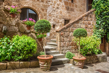 Stone entrance to the ancient house full of plants