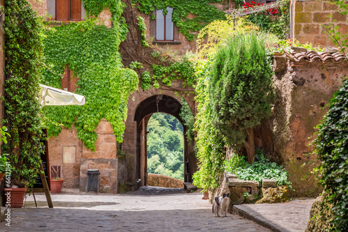 Ancient city overgrown with ivy in Tuscany - 66121141