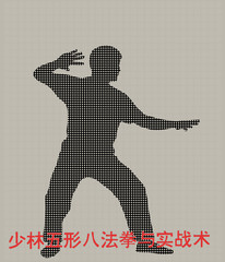 Silhouette of the man of engaged Kung fu on a gray background
