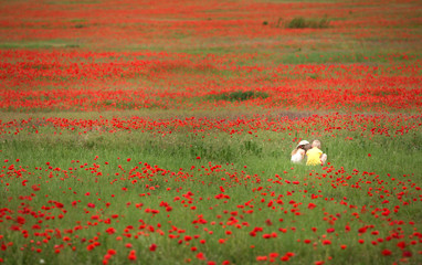 Large and dense poppy field with little children