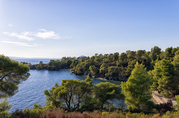 Forest and amazing sea, in Sithonia, Chalkidiki, Greece