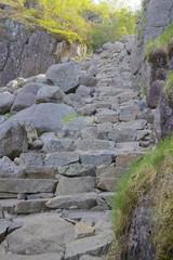 Path to Preikestolen 016