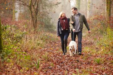 Couple Walking Dog Through Winter Woodland