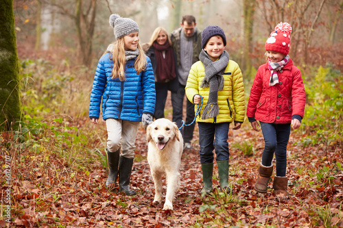 Family Walking Dog Through Winter Woodland - 66129707