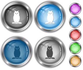 Owl. Internet buttons.
