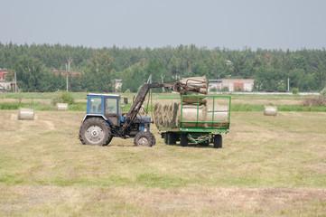 Mechanized harvesting of grass on the flood-plain meadow