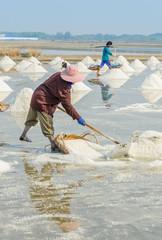 Sea salt harvesting in Thailand