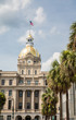 Savannah City Hall and Palm Trees