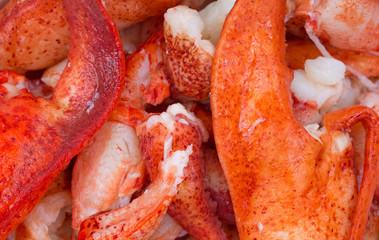 Close view of cooked lobster pieces