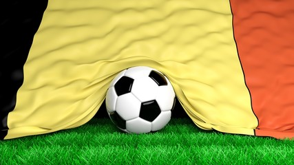 Soccer ball with Belgian flag on football field closeup