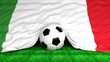 Soccer ball with Italian flag on football field closeup