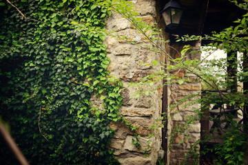 wall of a large brick house with a lantern and green ivy grows