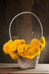 Dandelions in a basket on dark wooden background