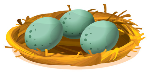 A nest with three eggs