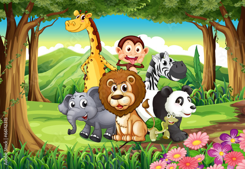 A forest with animals - 66142315