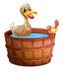 A duck and a bird taking a bath