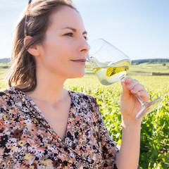 déguster dans les vignes