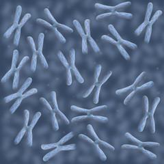 Chromosome Pool