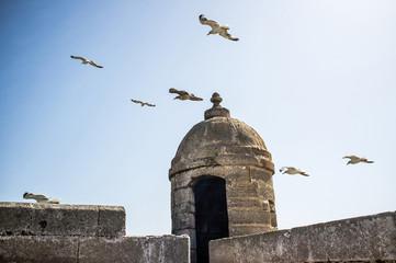 Skala du Port fortress, Essaouira, Morocco