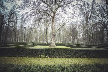 beautiful gardens Palace of Aranjuez, Madrid, Spain