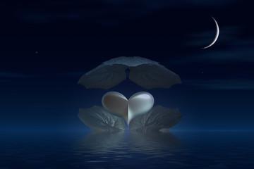 corazon nocturno
