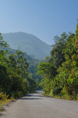 The road to mountain