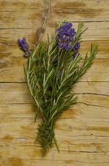 Rosmarinus officinalis and Lavandula