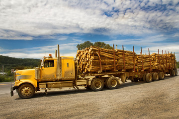 Yellow Truck shipping Wood on Canada road.