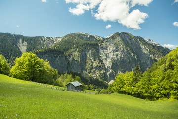 Naturlandschaft in den Alpen