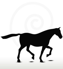 horse silhouette in Loping position