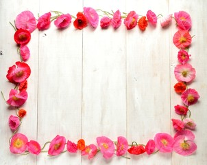 Pink poppies on white wooden background