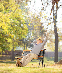 Relaxed pensioner sitting on a bench in park