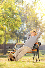 Elderly gentleman sitting on a bench in park