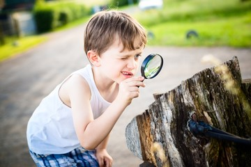 little boy looks at a tree trunk through a magnifying glass