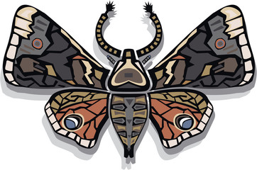 Moth vector illustration
