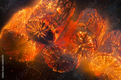 クヌギ菊炭の着火