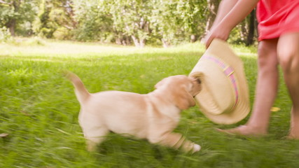 Girl running and playing with puppy