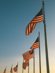 USA Flags in the Washington Monument