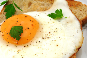 Close-up of a toast with fried egg and parsley on a white plate