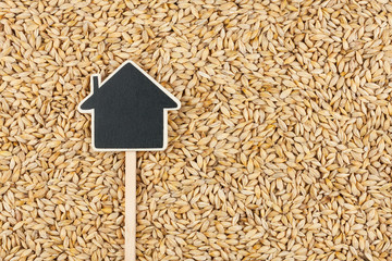 House pointer, the price tag lies on  barley