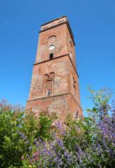 Blüten am alten Leuchtturm