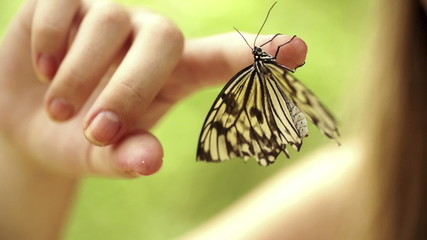 Butterfly on girls finger