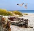 canvas print picture - altes Fischerboot, Möwen, Strand und Meer